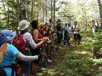 Hiking Cape Breton Highlands